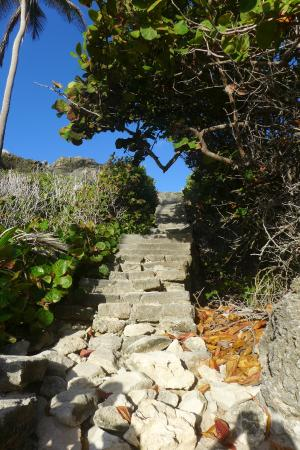 Bottom Bay : Stairs down to Harrismith Beach.