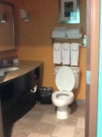 Comfort Suites at Fairgrounds - Casino: Bathroom