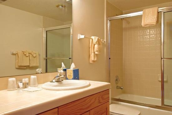 All Seasons Condominiums: Bathroom