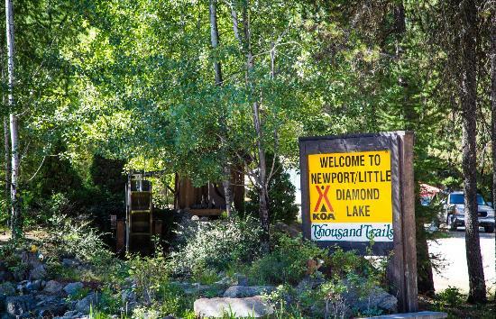 Newport/Little Diamond Lake KOA: Campsite