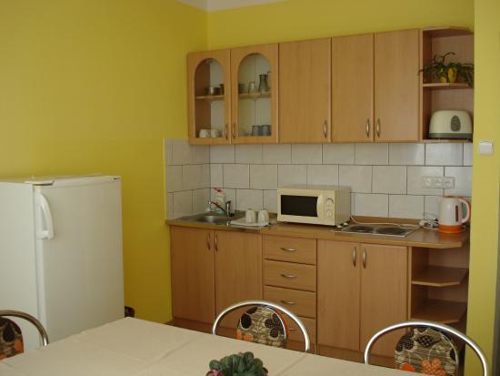 Ubytovna Unadrazi : Kuchyně