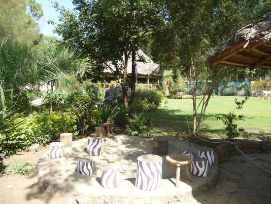The Vijiji Center Lodge & Safari: The Vijiji Center