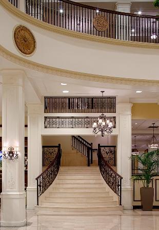 55 Hilton garden inn jackson downtown
