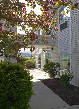 Eagle's View Inn & Suites: Landscaping