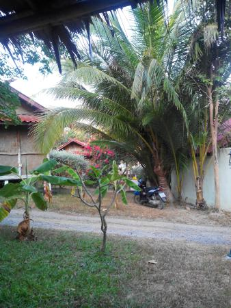 Tropical Garden Lounge Hotel: chambre