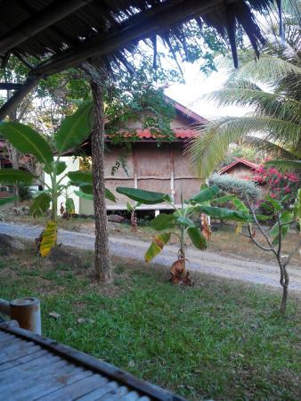 Tropical Garden Lounge Hotel : chambre
