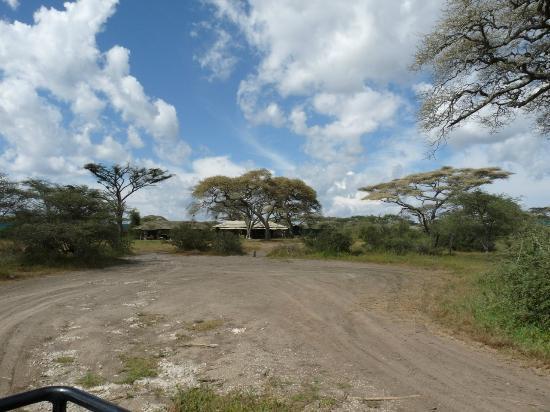 Lemala Ndutu Tented Camp: Parking area