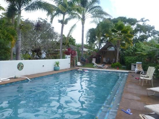 Banyan Bed and Breakfast Retreat: Huge pool, well maintained