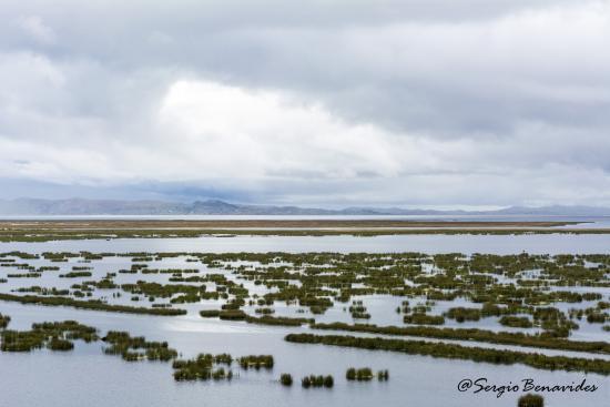 Libertador Lake Titicaca: Amanecer desde la habitación