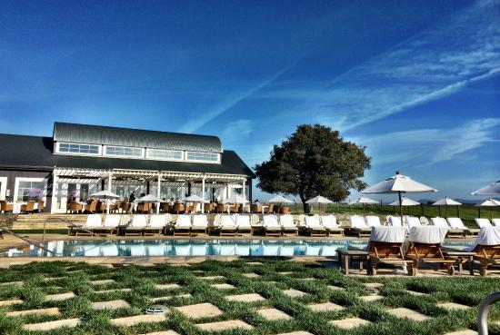 Hilltop cafe and pool picture of carneros resort and spa for Carneros inn napa valley