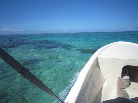 Daku Resort: Snorkelling from Daku's boat