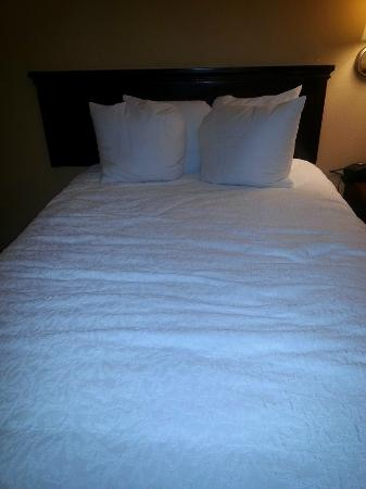 Hampton Inn Madison: One of the beds in room