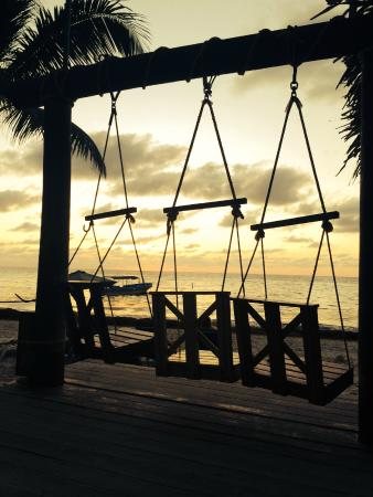 Bananarama Beach and Dive Resort: Sunset Swings