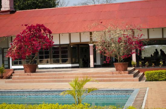 Kaziranga Golf Resort: Resort