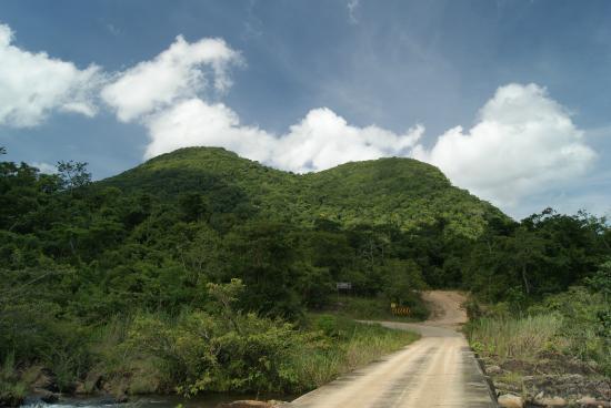 Mountain Pine Ridge Forest Reserve : По дороге