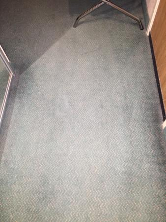 Rodeway Inn Salt Lake City Airport: Nasty floors, for a hotel that claims to be sold out there is absolutely no excuse.