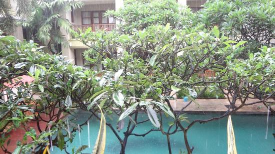 Fourteen Roses Beach Hotel : Смотреть на дождь можно вечно