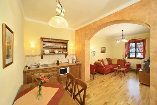Castle View Apartments 94 1 0 Updated 2019 Prices Inium Reviews Cesky Krumlov Czech Republic Tripadvisor