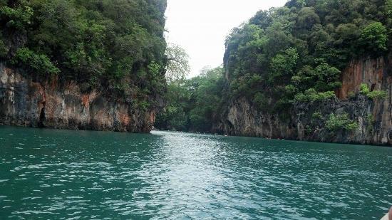 Province de Krabi, Thaïlande : ทะเล-ต้นไม้
