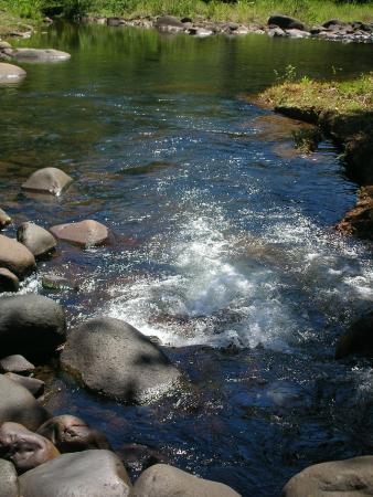 Goyave, Guadeloupe: le bain à la rivière