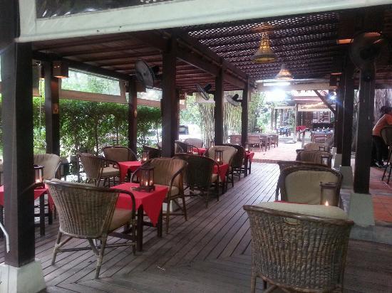 Big tree bar and breakfast area