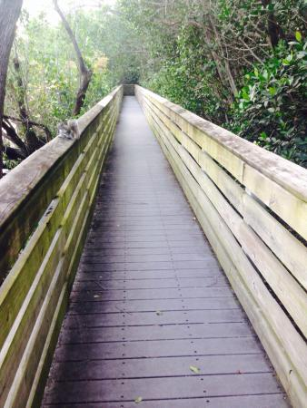 Wilton Manors, FL: Nature Trails