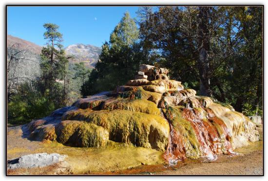 Hampton Inn Durango : NAtural Spring up the road