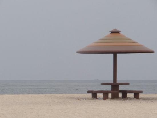 Villa Alisa: Дикий пляж через дорогу.