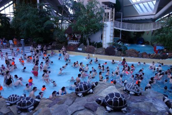 Piscine vague picture of sunparks kempense meren mol for Sun park piscine