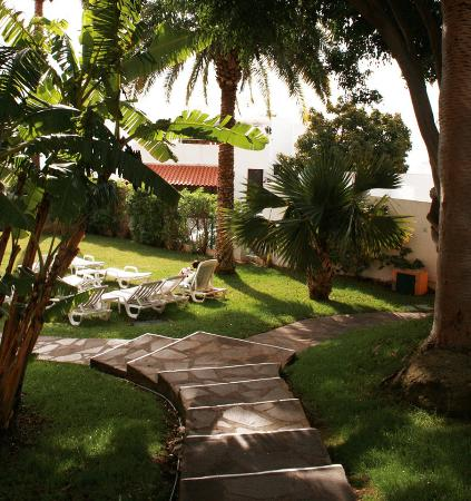 Dom Pedro Garajau : Garden