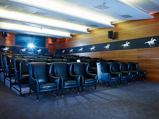 The Scotsman Hotel: Screening room