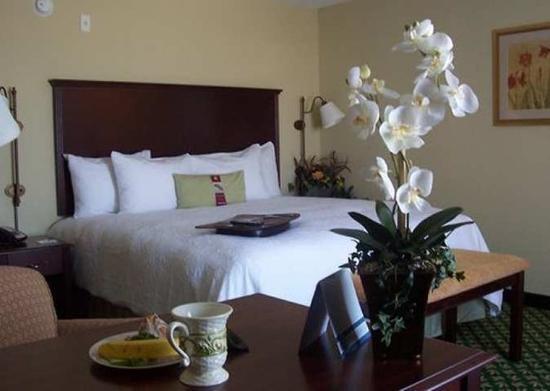 Hampton Inn & Suites Fort Worth-West/I-30 : Guest Room