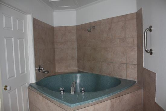 Silver Fern Rotorua - Accommodation and Spa : bathroom
