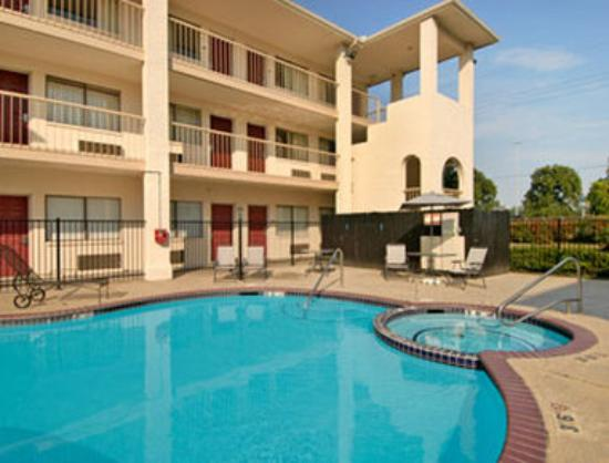 Super 8 Spring/The Woodlands Area: Pool