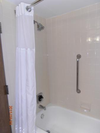 Best Western Plus Madison-Huntsville Hotel : shower with bars