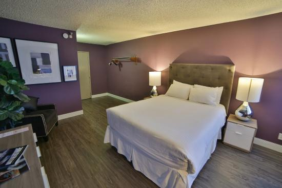 Oasis At Gold Spike Updated 2017 Hotel Reviews Price