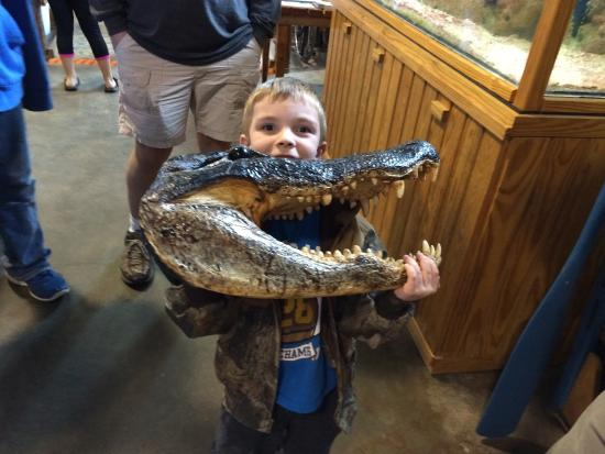 Rockport, TX: One of the volunteers let my gator loving son hold a gator head. Made his trip for sure!