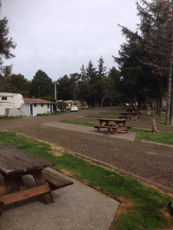 Netarts Bay RV Park and Marina: The pull through sites 1-14 with the bathroom/showers and laundry across the way.