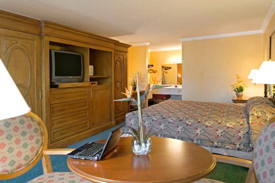 Americas Best Value Inn & Suites: King Standard