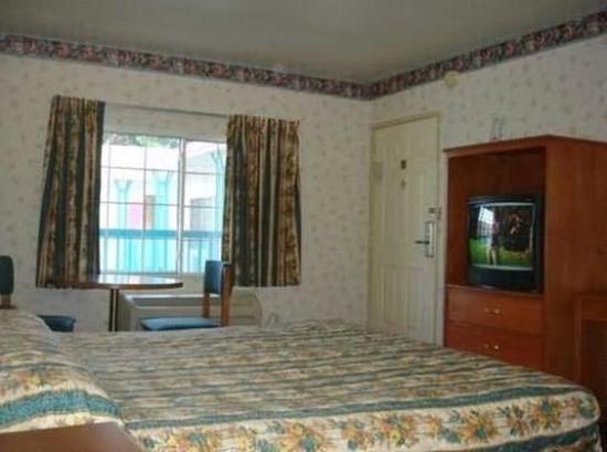 Hollywood Guest Inn : Guest Room
