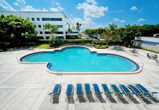 Sheraton Fort Lauderdale Airport & Cruise Port : Pool