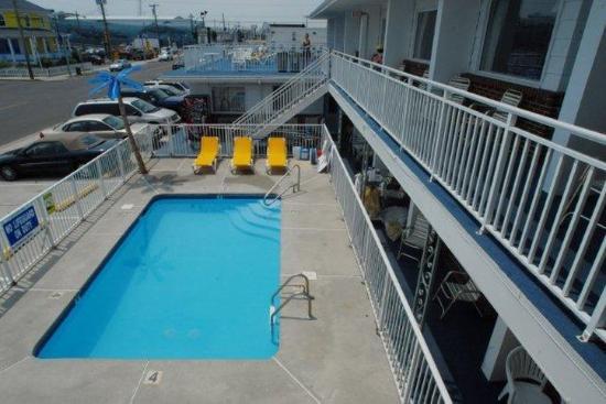Blue Palms : Pool