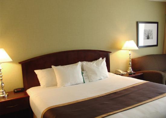 Quality Inn: Guest Room