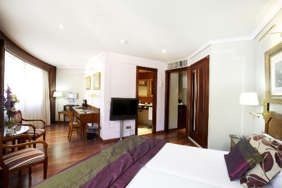 Hotel Plaza Andorra: Standard Room