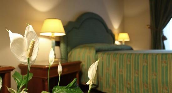 Hotel Panama: Room