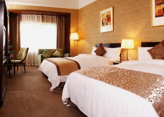 Comfort Inn & Suites: CPSTSTN
