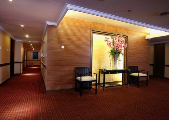 Comfort Inn & Suites: CPCorridor