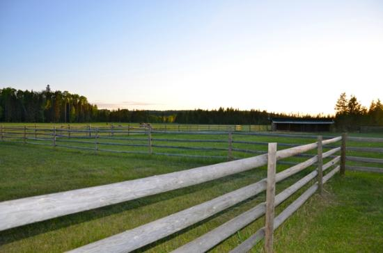 Norton North Ranch Cottages: space - privacy - tranquility