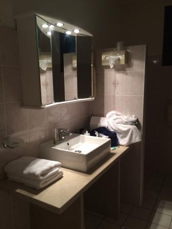 Hotel Chez Walter : La sdb