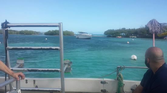 Paradise Scuba and Snorkeling Center